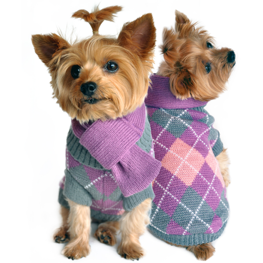 I can't even stand the cuteness of this picture. Look at this argyle purple sweater with matching scarf. Perfect for melting hearts when the weather turns cold. Get it here!