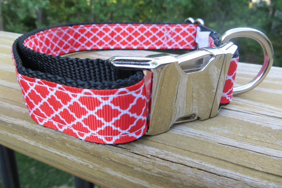 This cute number is from Custom Collar. The buckle can even be engraved.