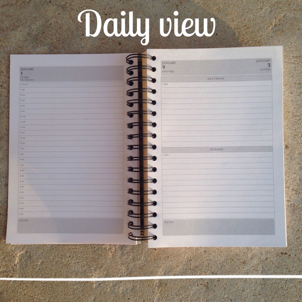 2016 Planner daily view