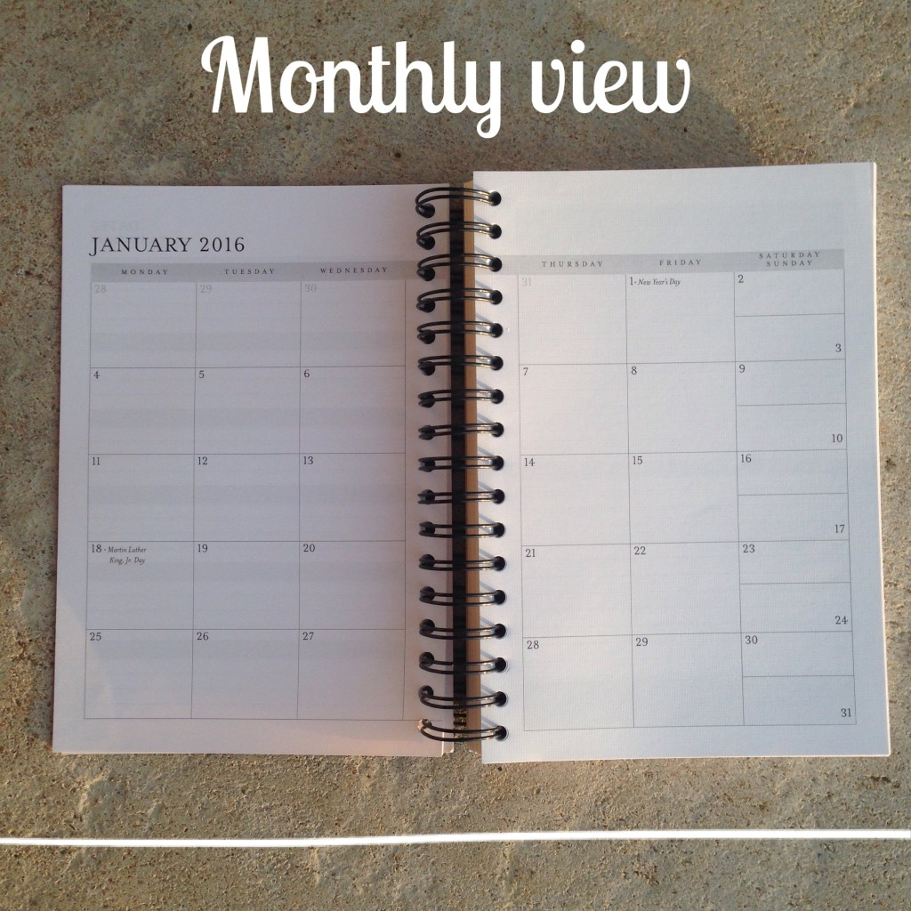 2016 planner monthly view