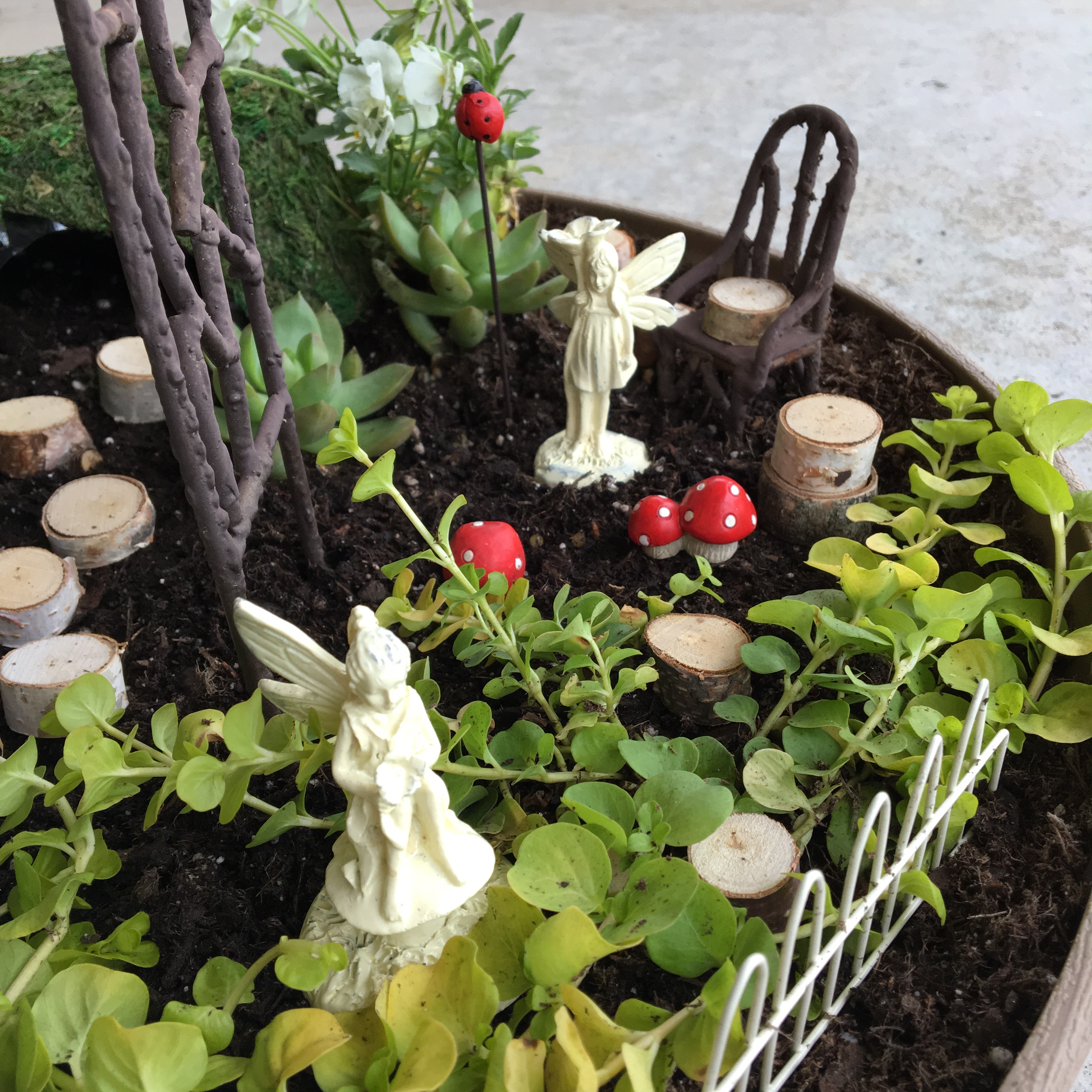mini garden Archives - The Neat Nook
