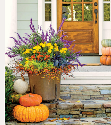 fall-planter-with-purple-and-bittersweet