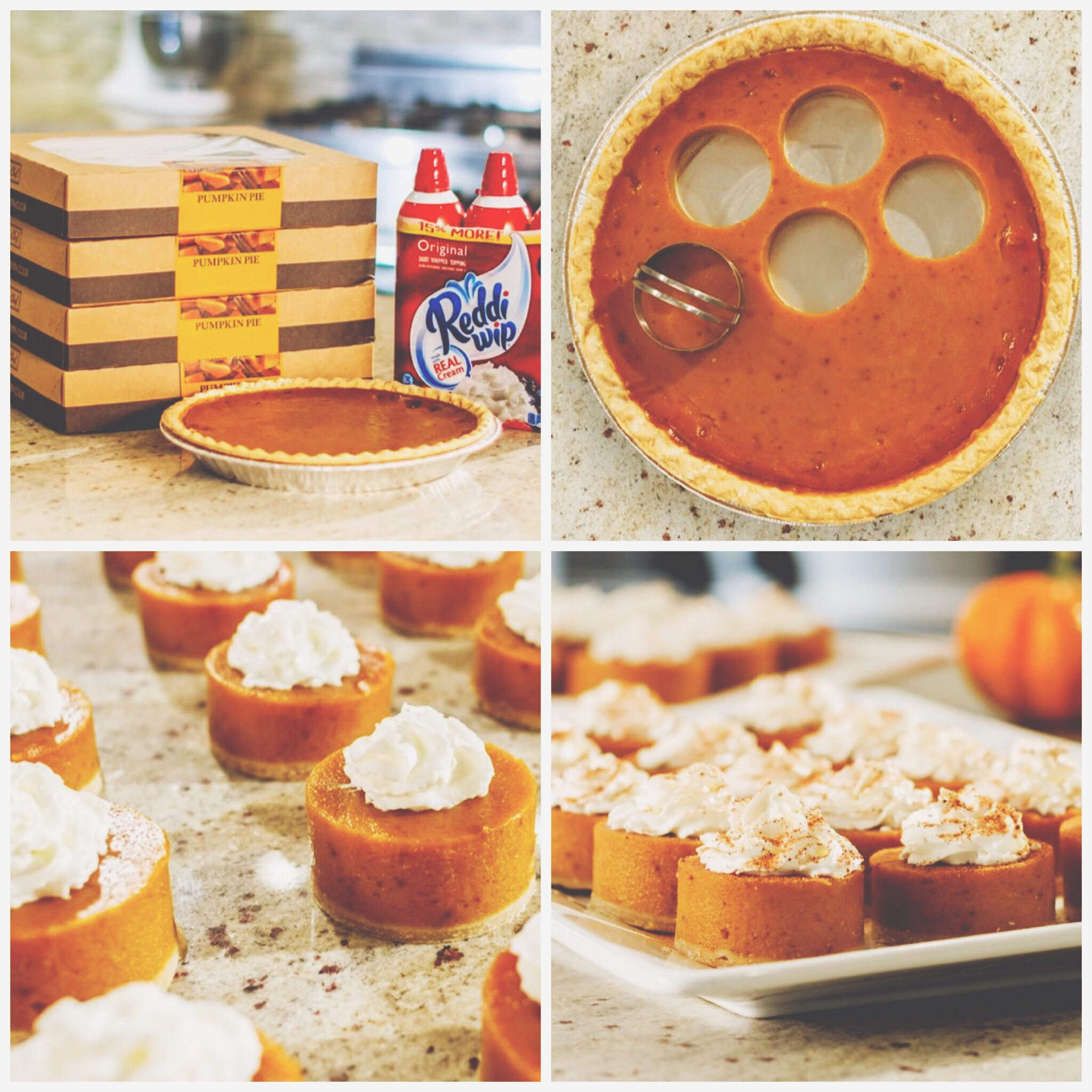 mini-pumpkin-pie